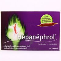 HEPANEPHROL, solution buvable en ampoule à Lacanau