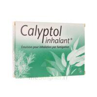 CALYPTOL INHALANT, émulsion pour inhalation par fumigation à Lacanau
