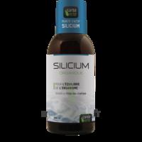 Santé Verte Silicium Solution buvable Fl/500ml à Lacanau
