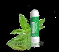 PURESSENTIEL RESPIRATOIRE Inhalation nasal 19 huiles essentielles à Lacanau