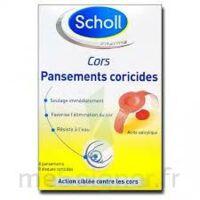 Scholl Pansements coricides cors à Lacanau