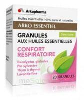 Arko Essentiel Confort Respiratoire Granules B/20 à Lacanau