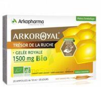 Arkoroyal Gelée royale bio 1500 mg Solution buvable 20 Ampoules/10ml à Lacanau