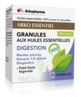 Arko Essentiel Digestion Granules B/20 à Lacanau